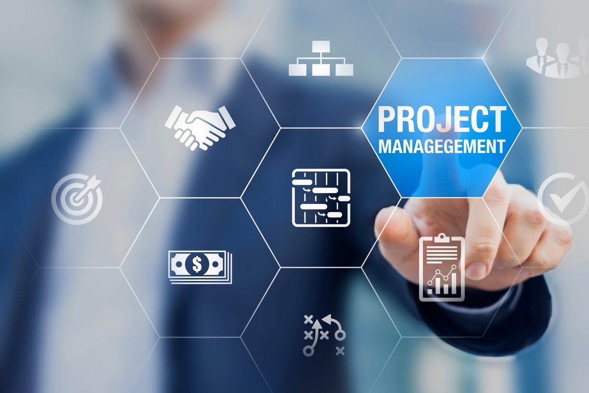 project management theory and reality